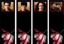 New Moon boekenlegger (Twilight Saga)