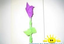bloem zoen